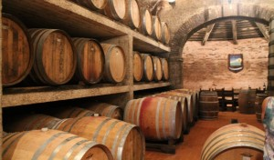 French Oak and Slavonian Oak barriques fill the cellar