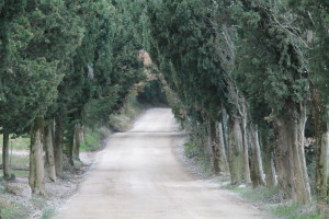 "The ""white road"" to Vagliagli"