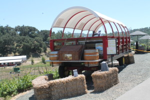 Western Wine Wagon Excursions offer on-board lunch and stops at each vineyard for tasting!