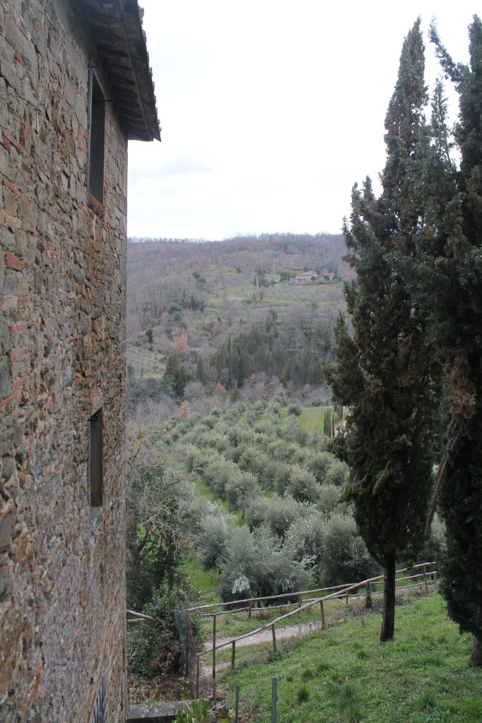 Over 900 acres of vines, olive trees and wooded forests comprise Castello di Volpaia's homestead.